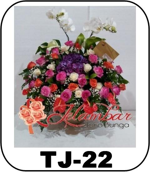 TJ-22_1300