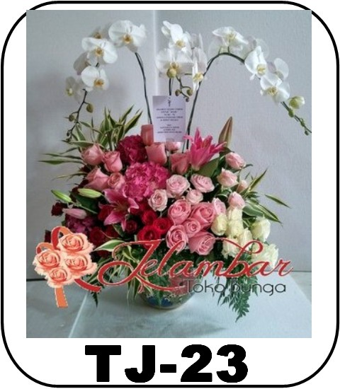 TJ-23_1500