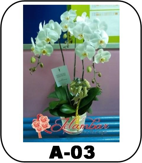 arkana florist jakarata - A-02_700